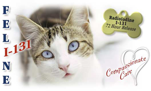 Radioiodine Therapy For Hyperthyroidism. Garden State Veterinary Specialists  ...